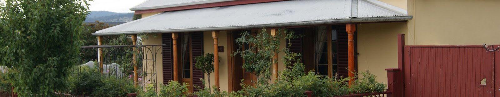 tasmanian slider